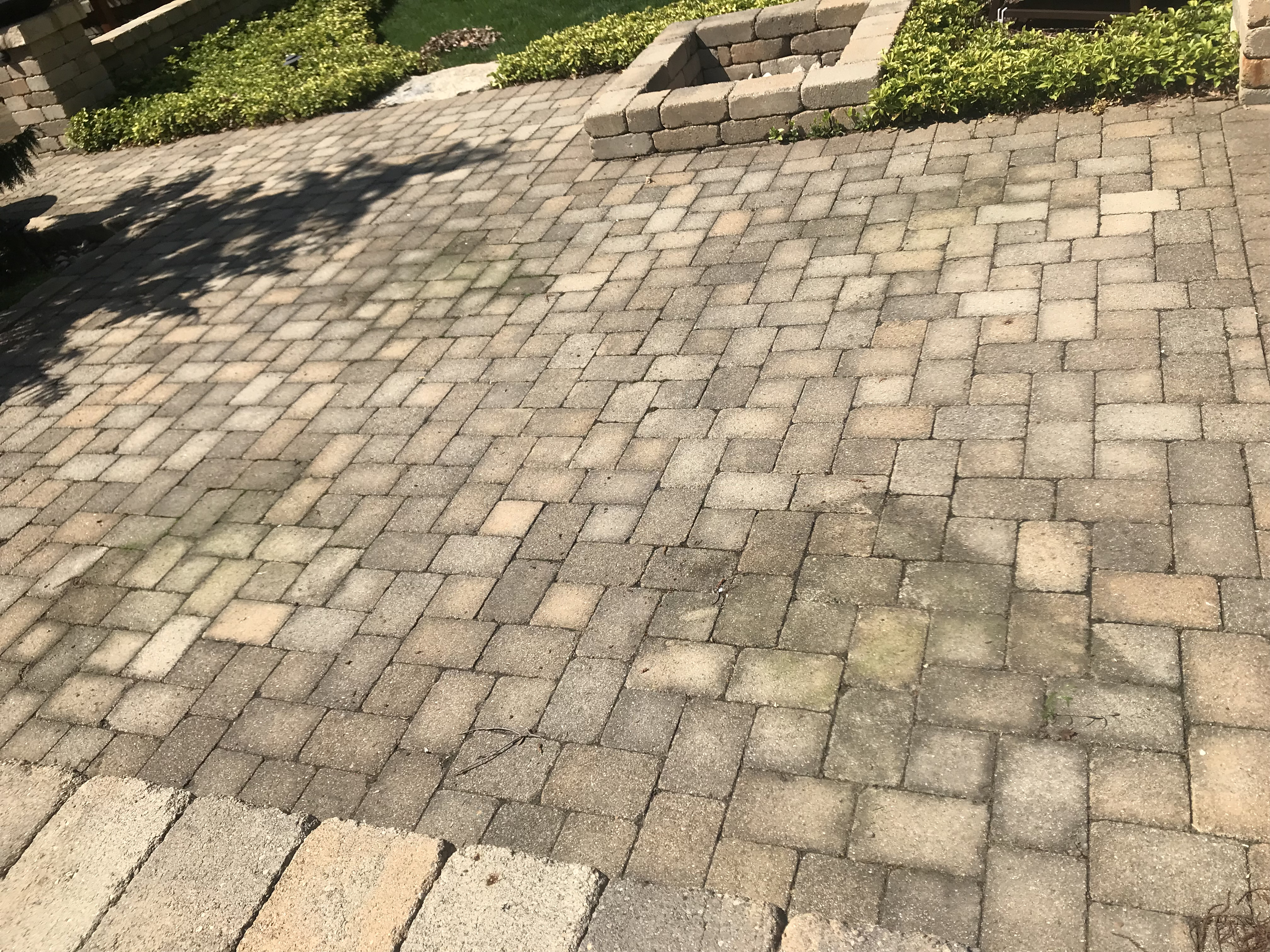 Patio Paver Cleaning